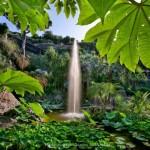 Ischia Mortella Gardens